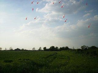 UFO Pictures-Lancashire, UK
