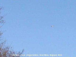 UFO Picture, Wordsley, England, 2008
