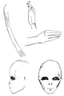 Nurse's Drawing