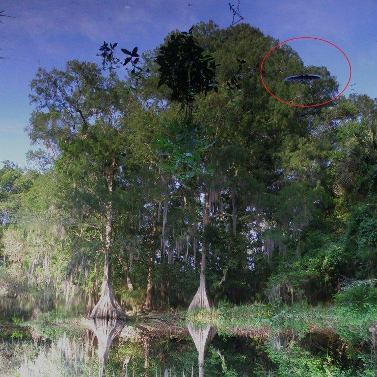 Hawthorne, Florida - 04-25-10