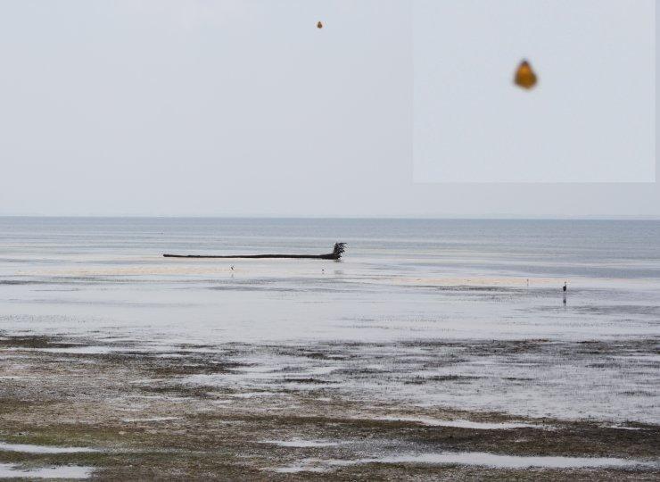 http://www.ufocasebook.com/2011/apalachicolaflorida091711.jpg