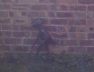 Preston, UK, Alien