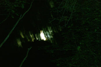 This strange light, hovering over the woods on July 11 around 11:30 p.m. caught Killingly resident Sherrie Racine's attention, and she photographed it. Courtesy photo