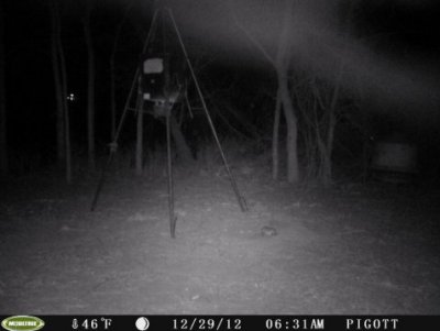 Stills from a deer cam, taken near Nixon, Texas on Dec. 29, 2012. Mutual UFO Network says the triangular lights might be signs of a UFO