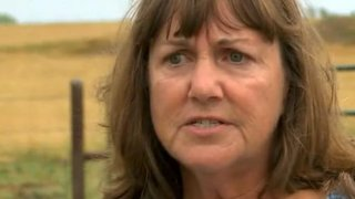 Lyn Mitchell is stumped by the mysterious deaths of her cattle
