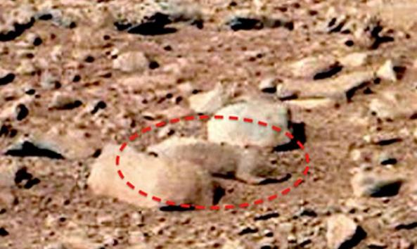 A Mars rat spotted in a picture taken by Curiosity isn't a rat at all -- just a rock.