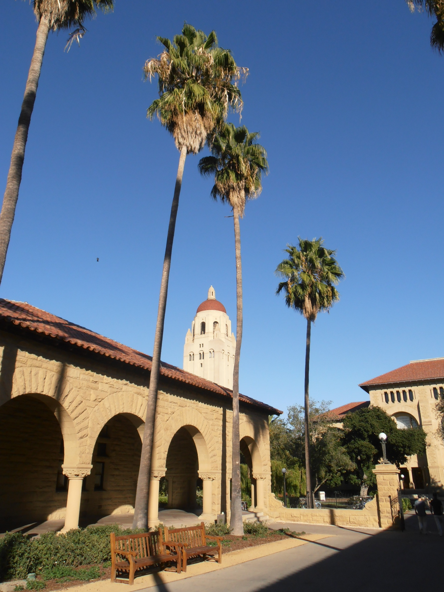 Hoover Tower, Stanford, University
