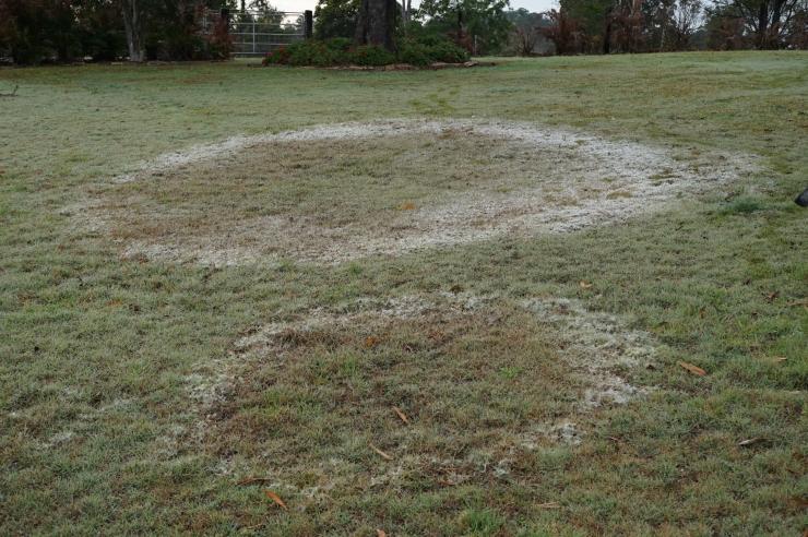 UFO landing marks in Australia
