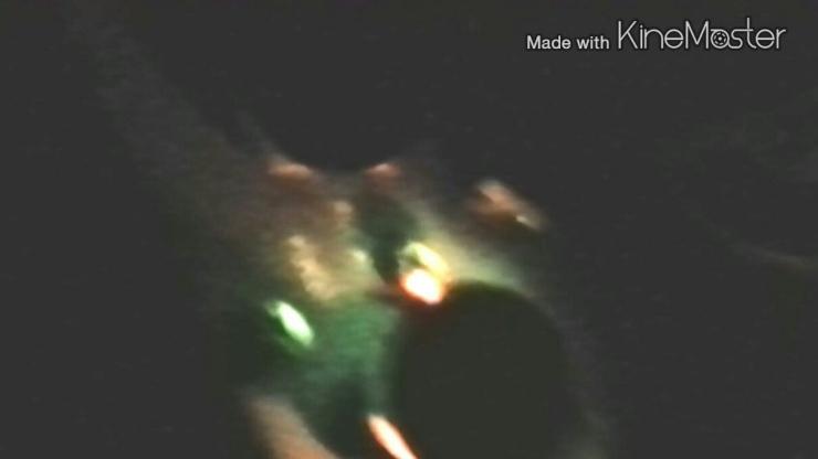Pilot Has Incredible UFO Encounter over California: Takes Photographs, Video