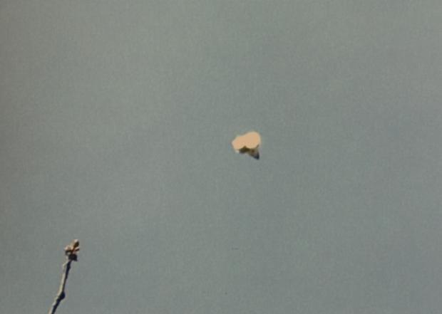 Sandra Stuteley's UFO Picture