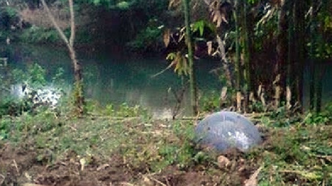 What is that? ... One of the strange objects landed near a lagoon in Thailand. Picture: UFO Sightings Daily