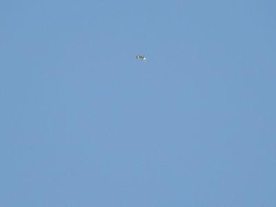 UFO over Great Britain