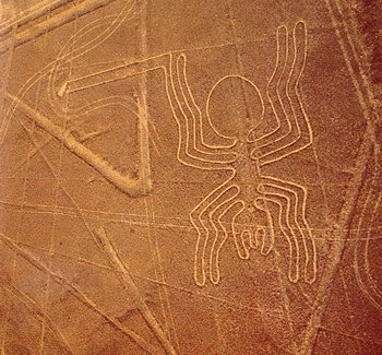 The Nazca Lines Spider