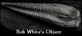 Bob White debris