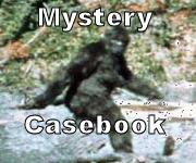 Mystery Casebook