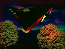 UFO intrees