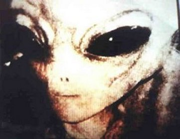 Alleged Alien Photographs Photos Of Real Ufos And Aliens