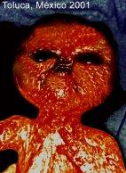 Toluca Alien